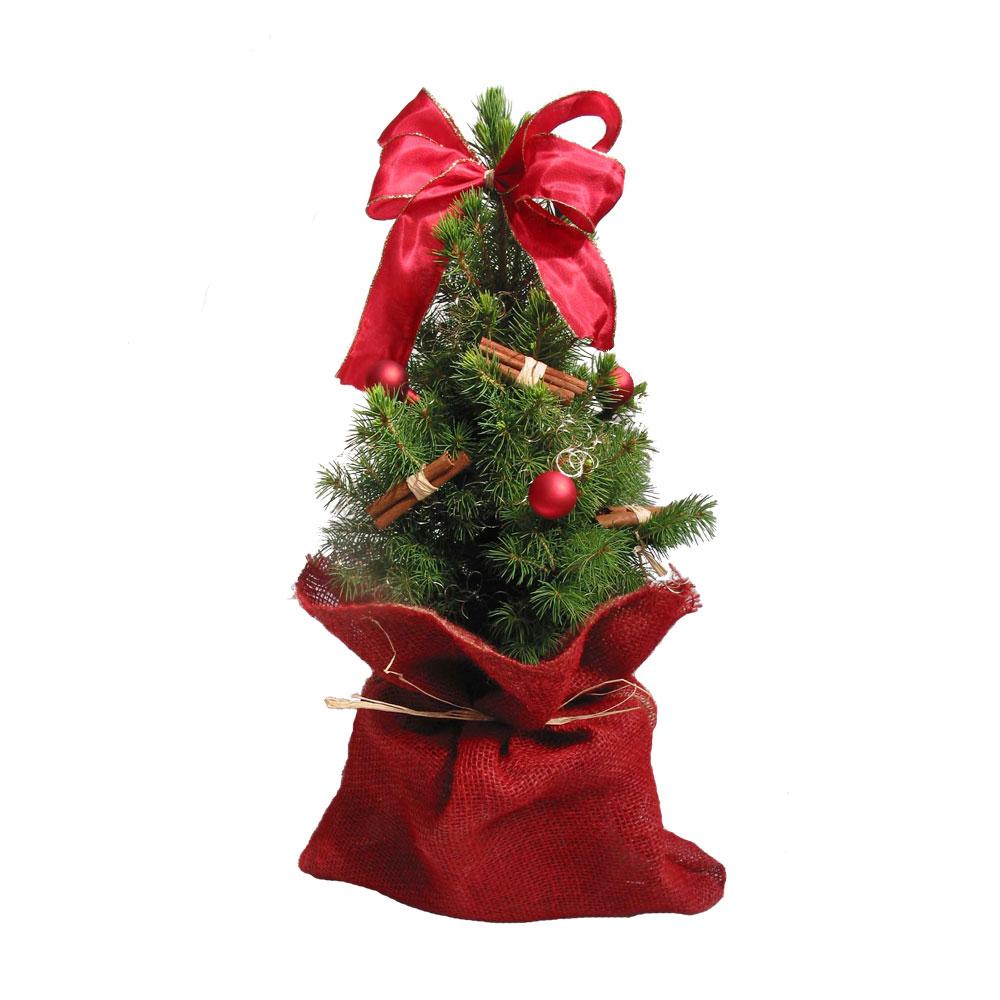 Weihnachtsbaum mit roter Schleife und Zimt im Jutesack